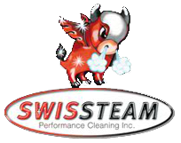 Swissteam Performance Cleaning Logo